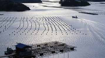 EC guidance on sustainable aquaculture