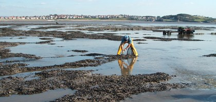 man collecting sediment from a muddy landscape