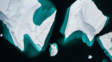 icebergs in sea