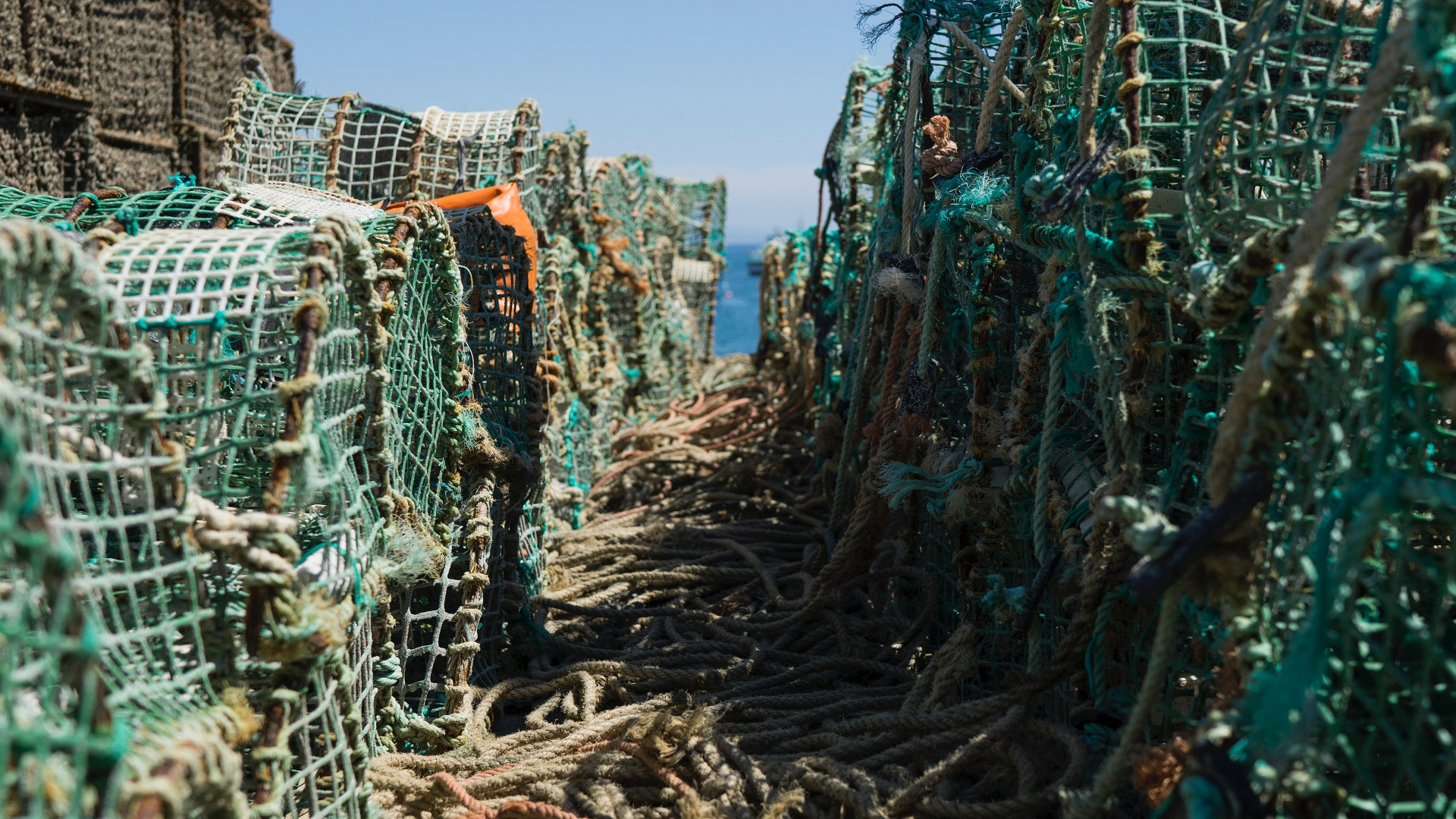 lobster pots and nets