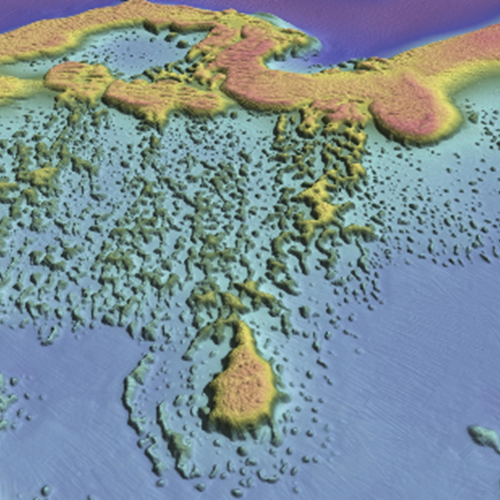 a computer generated map of the seabed