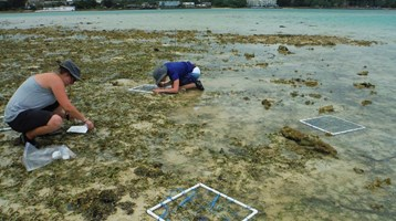two people in a seagrass field by the water conducting scientific experiments