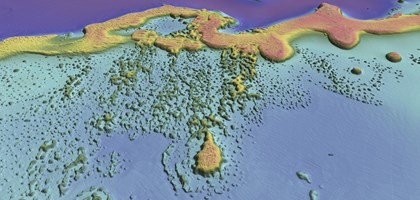 false colour map showing features of a seabed